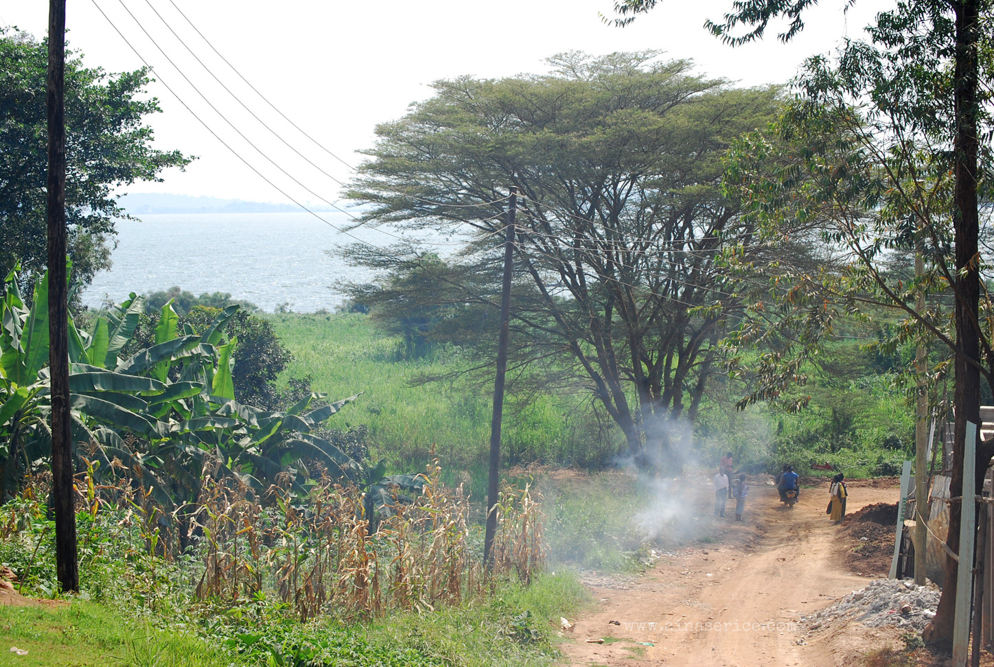 Dust-red trail down to Lake Victoria near Port Bell